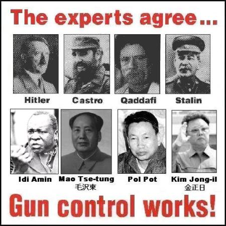 gun_control_works21
