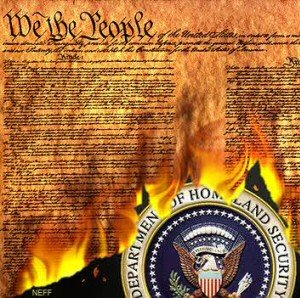 constitution burning