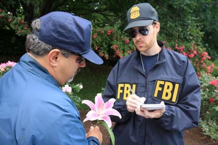 Disillusioned-FBI-R